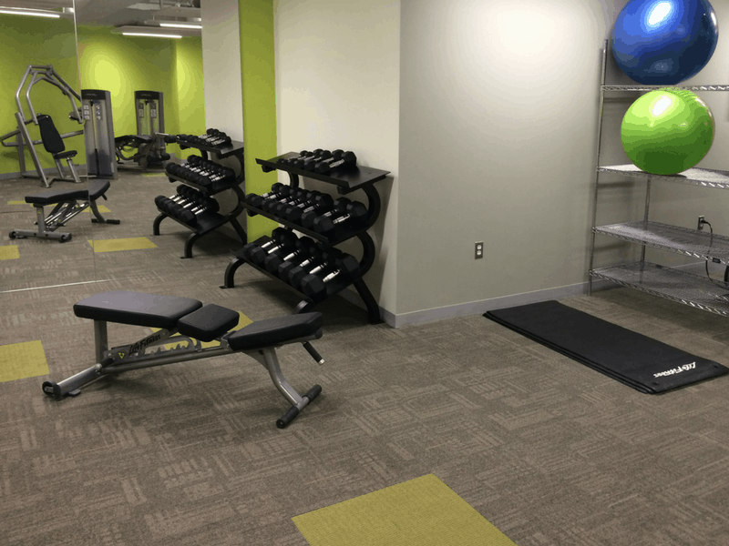 Amenities: Gym equipment and facilities for in house clients.